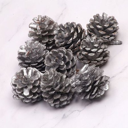 Fancyleo Christmas Decoration Pine Cones Snow Tipped Natural Pine Cones for Decorating and Designing (Pine Cone Designs)