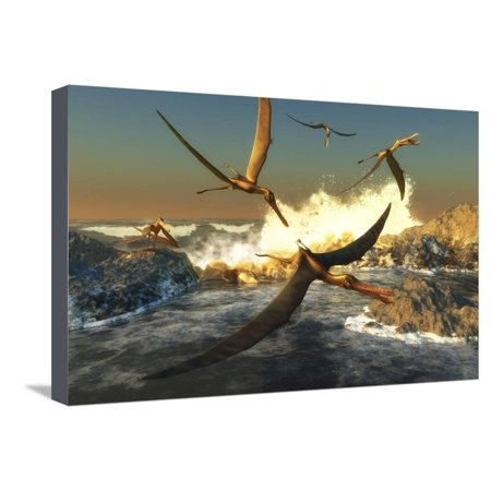 A Flock of Anhanguera Pterosaurs Catch Fish Off a Rocky Coast Stretched Canvas Print Wall Art By Stocktrek