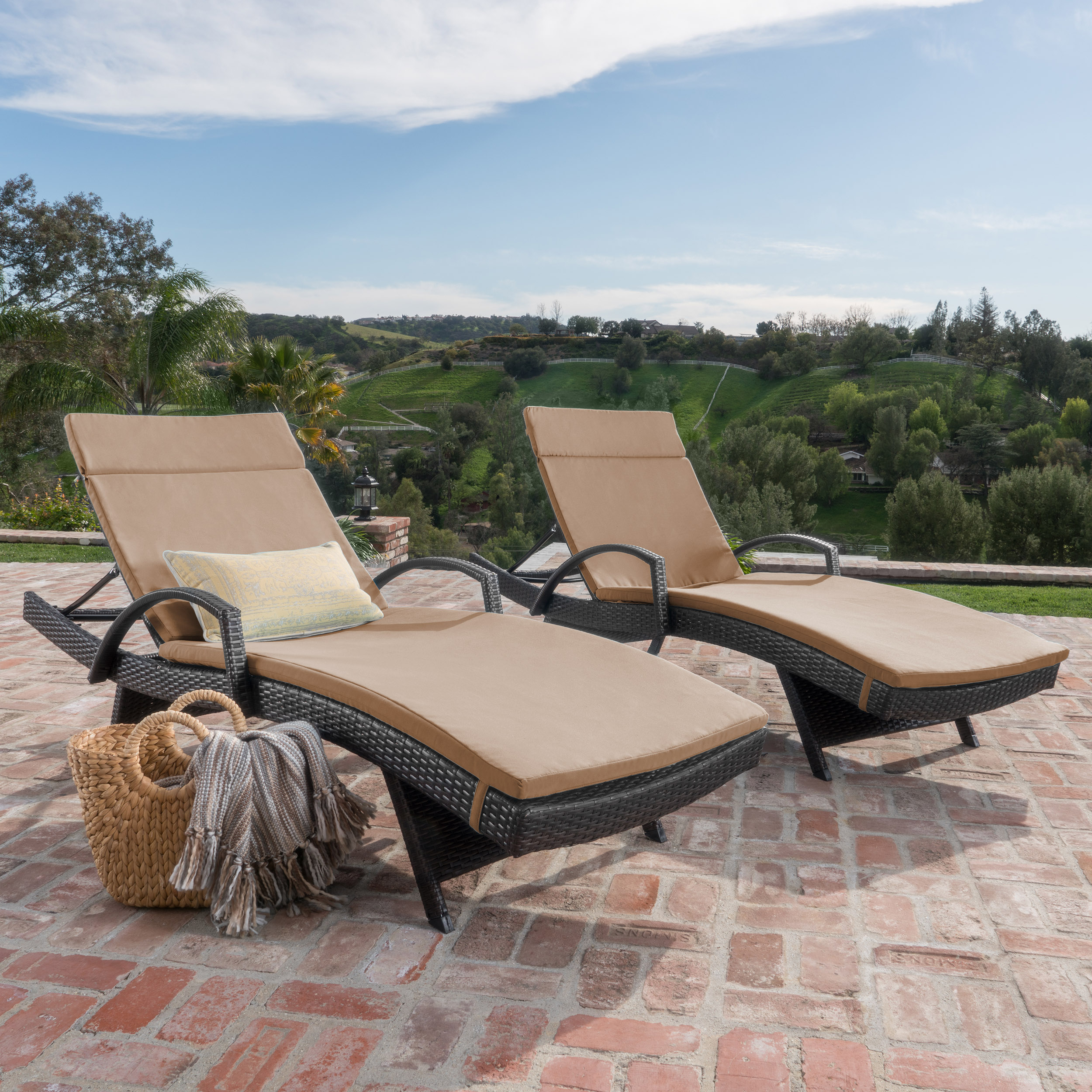 Anthony Outdoor Wicker Adjustable Chaise Lounge with Arms and Cushion, Set of 2, Multibrown, Carmel