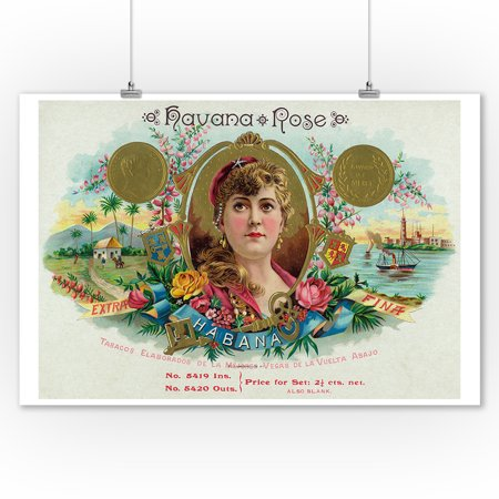 Havana Rose Brand Cigar Box Label (9x12 Art Print, Wall Decor Travel Poster)