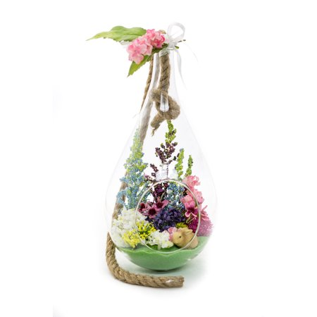 Terrarium Kit   Spring N Bloom Spring Series  Complete Gift Set   10   Teardrop Pear Shaped Glass Planter With 15   Rope   Easter Terrarium   Nautical Crush Trading Tm