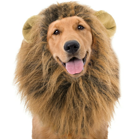 13 Halloween 100 Floors (Lion Mane Wig For Dogs Halloween Costume - 100% Polyester Fits MD / LG)