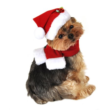 800aaf933 Holiday Pet Apparel SimplyDog Holly Santa Hat and Red Scarf Dog ...