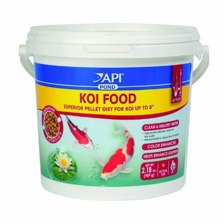 Api koi fish food 35 ounce multi colored for Walmart fish food