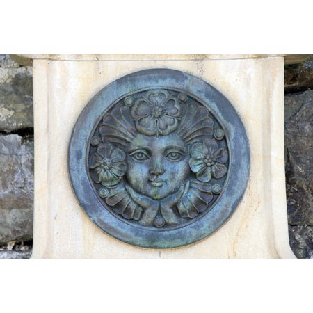LAMINATED POSTER Flower Lippe Rose Rose Medallion Face Poster Print 24 x (Face Medallion)