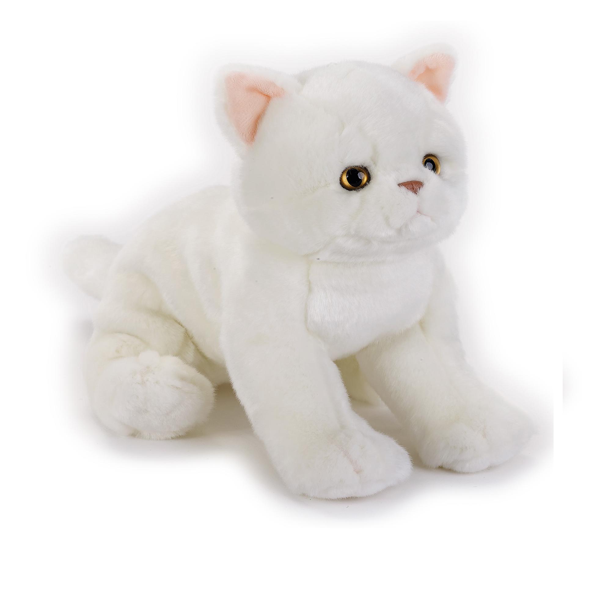 Mehrfarbig Venturelli 8004332706731 Scottish Fold Cat NGS Pl/üsch Katzen