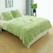 "Warm Shaggy Faux Fur Plush  Queen Size Blanket 78x90"",Light Green"