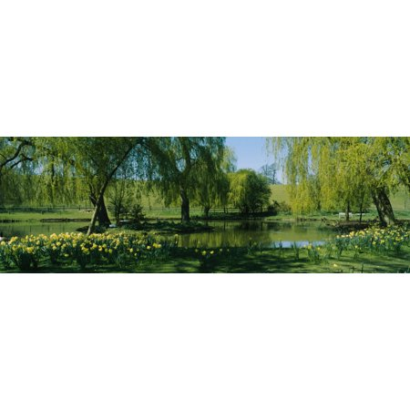 Trees and plants in a formal garden Leeds Castle Kent England Poster Print by Panoramic Images