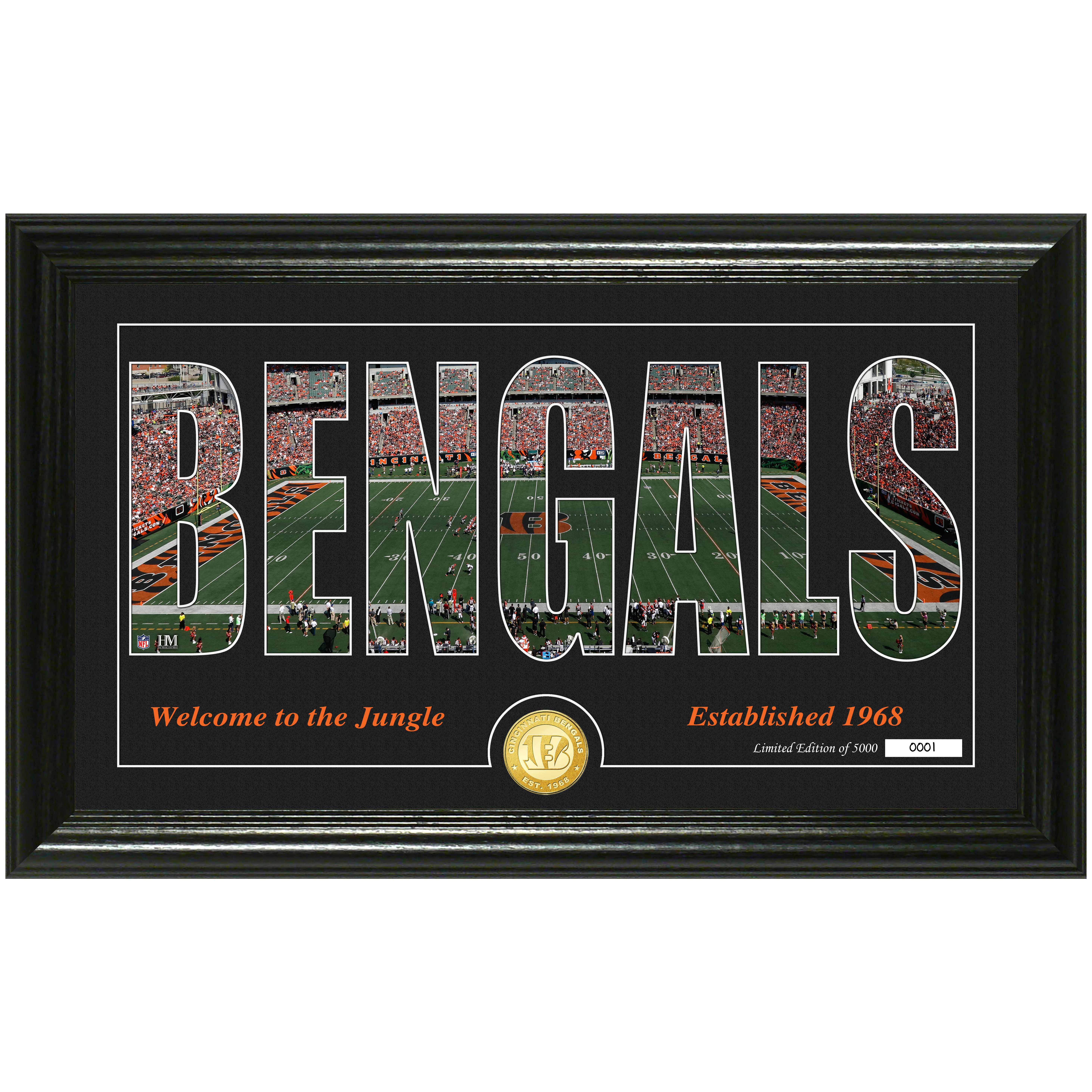 "Cincinnati Bengals Highland Mint 12"" x 20"" Silhouette Panoramic Photo Mint - No Size"