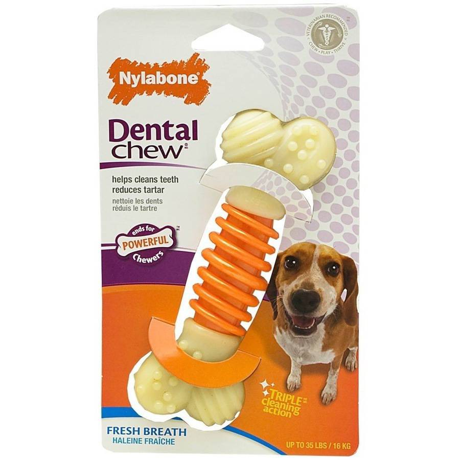 Nylabone Pro Action Dog Bone Dental Chew Toy, Bacon, Medium