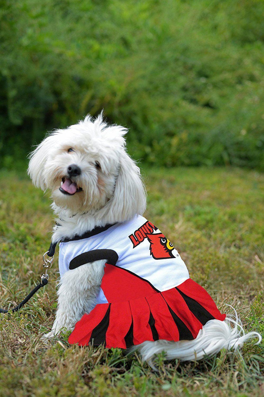 All Star Dogs NCAA Boston College Eagles Dog Cheerleader Dress