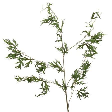 Delphinium Plants (Distinctive Designs Delphinium Foliage Vine Silk Plant - Set of)