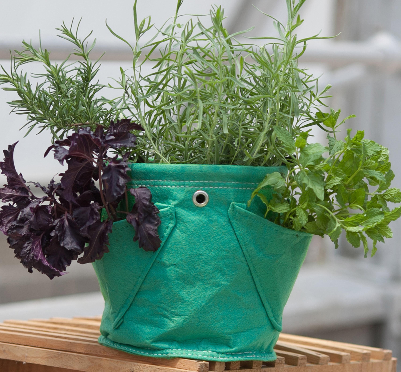 BloemBagz Mini Herb Hanging Planter Grow Bag 1.5 Gallon Calypso ...