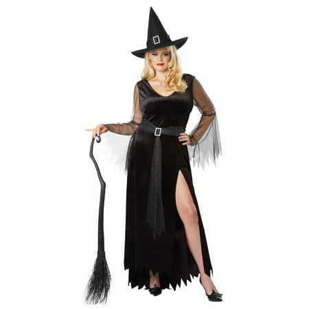Rich Witch Women's Plus Halloween Costume (Witches Broomstick Halloween)