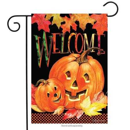 Pumpkin Pals Halloween Garden Flag Jack oLanterns Briarwood Lane 12.5  x 18  Pumpkin Pals Halloween Garden Flag Jack oLanterns Briarwood Lane 12.5  x 18  condition: New Brand: Briarwood LaneMPN: G00476Material: PolyesterSize: 12.5  x 18