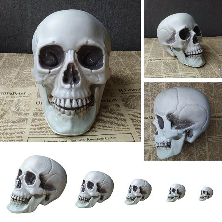 Victorian Style Halloween Decorations (Human Skull Head Halloween Style Prop Home Party Decor Movie Halloween Props Bar Coffee Haunted House)