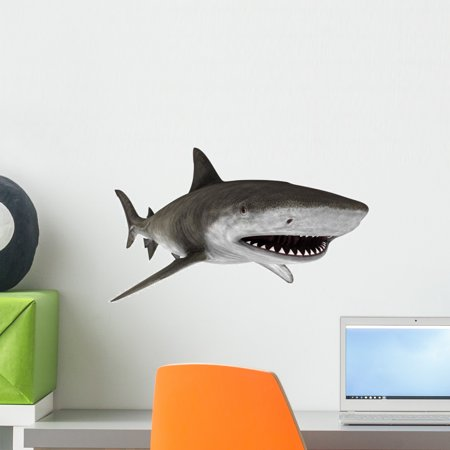 Shark 5 Wall Decal by Wallmonkeys Peel and Stick Graphic (18 in W x 9 in H) WM148667 (Shrek Wall Decals)