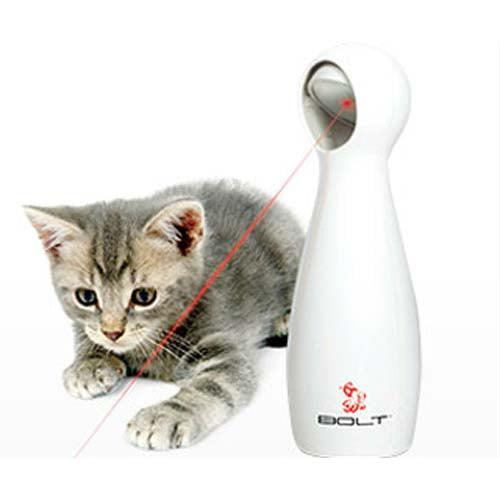 PetSafe Bolt Interactive Laser Light Cat Toy - Walmart.com