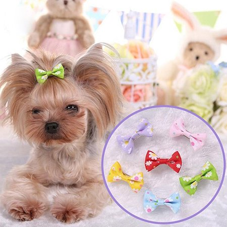 Girl12Queen 6 Pcs Dog Cat Puppy Hair Clips Hair Bow Tie Flower Bowknot Hairpin Pet Grooming (Bow Tie Clips)