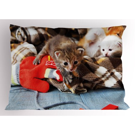 Cats Pillow Sham Kittens and Mittens Newborns Baby Animals in an Plain Blanket Wood Play Toys Adorable, Decorative Standard Size Printed Pillowcase, 26 X 20 Inches, Multicolor, by