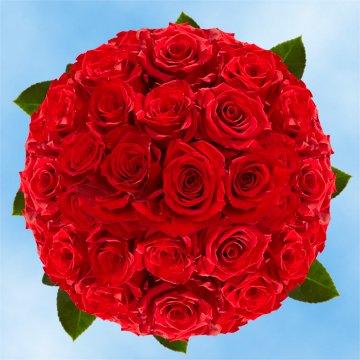 GlobalRose Beautiful Long Stem Red Roses - Order 100 Red Roses