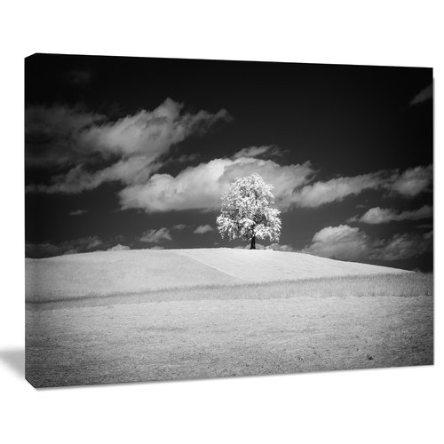 Design Art Lonely Tree on Meadow Black White Photographic Print on Wrapped Canvas