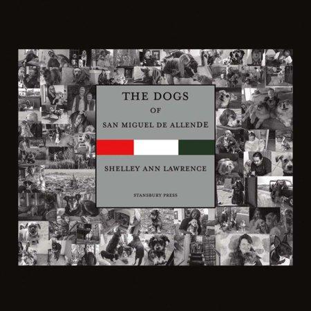 The Dogs Of San Miguel De Allende