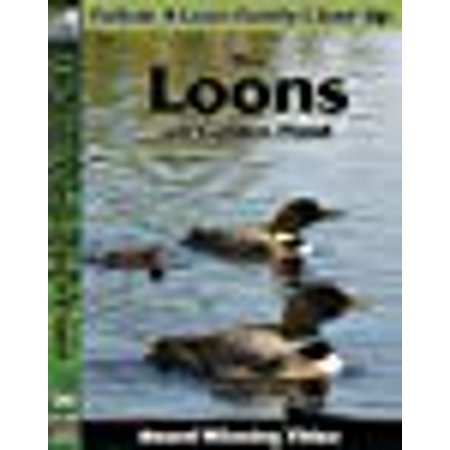 Loon Pond (The Loons on Golden Pond)