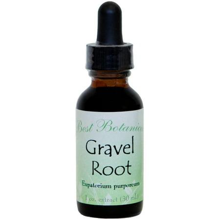Best Botanicals Gravel Root Extract 1 oz.