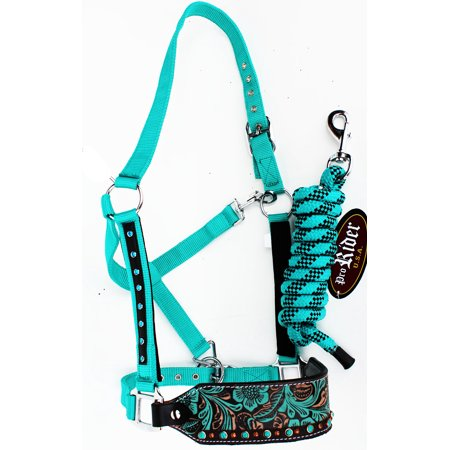 Horse Noseband Tack Bronc Leather HALTER Tiedown Lead Rope Turquoise 280M80222 Kensington Leather Halter