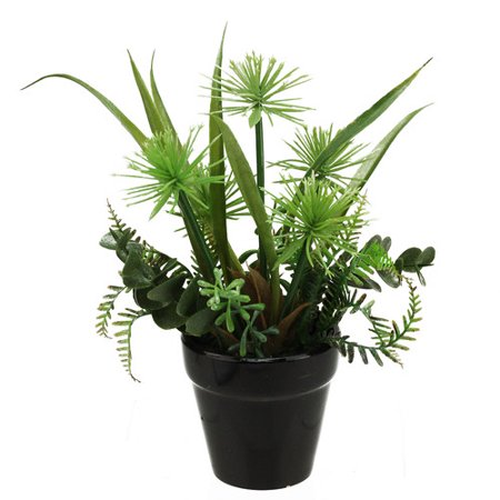 Top Plant (Northlight Seasonal Artificial Mixed Succulent Desk Top Plant in Pot )