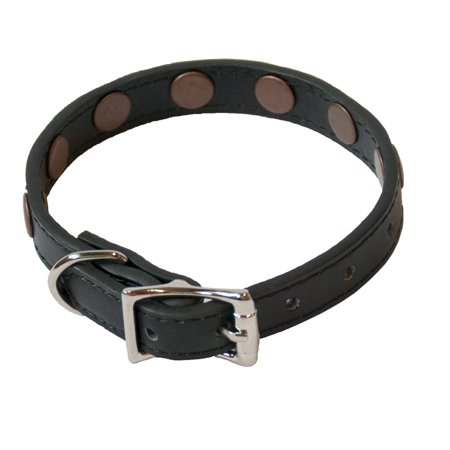 K9 Copper Studded Homeopathic Dog Collar Small