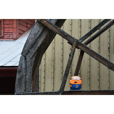 Minion Pumpkin Painting (LAMINATED POSTER Fall Mill Water Wheel Pumpkin Minion Wheel Poster Print 24 x)