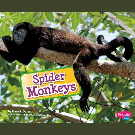 Spider Monkeys - Audiobook