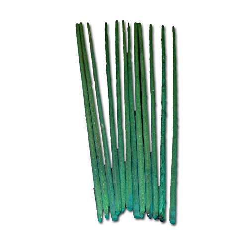 Green Hardwood Orchid Stakes - One Dozen 12 inch