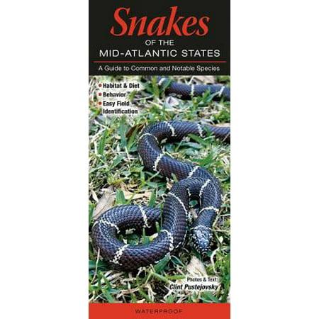 Snakes of the Mid-Atlantic : Pa, NY, NJ, de, MD, Va, (Work In Ny Live In Pa Taxes)