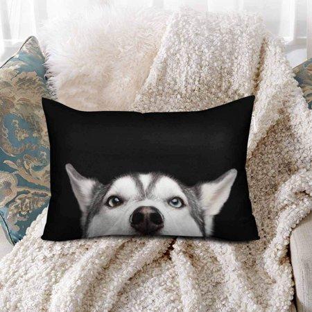 GCKG Siberian Husky Dog Face Blue Eyes Animal Nature Pillow Cases Pillowcase 20x30 inches - image 1 de 4