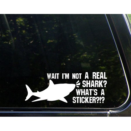 Wait I'm Not A Real Shark? What's A Sticker?- 8-3/4