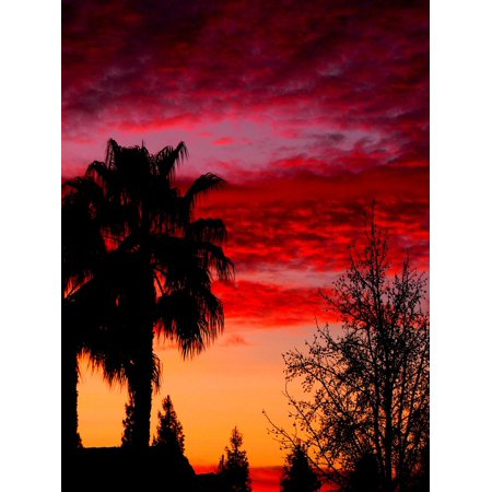 LAMINATED POSTER Sunset Colors Purple Orange Warm Sky Pink Poster Print 24 x 36](Pink Orange Color)