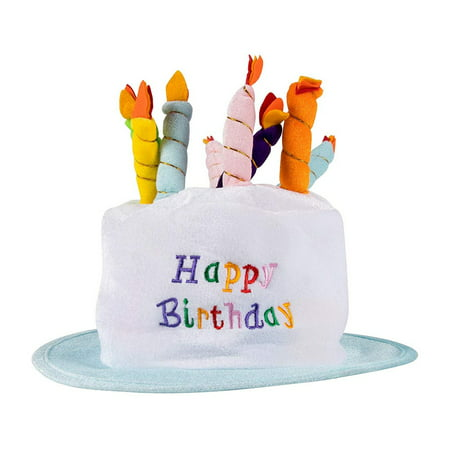 Surprising Birthday Cake Plush Party Hats Funny Birthday Top Hat With Personalised Birthday Cards Paralily Jamesorg