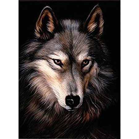 LONE WOLF 3D UNFRAMED Holographic Wall Art--Lenticular Technology Causes The Artwork To Have Depth and Move-HOLOGRAM Style Images-HOLOGRAPHIC Optical Illusions By THOSE FLIPPING PICTURES - Illusions Photo Wall