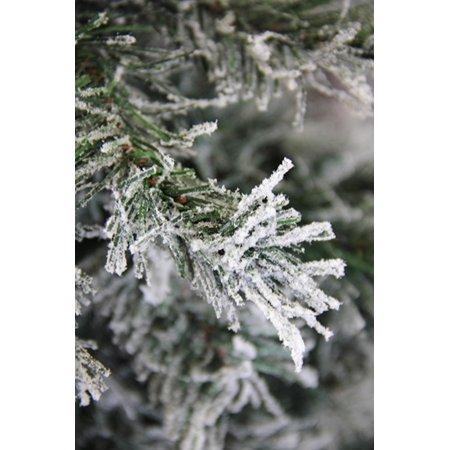 """4' x 24"""" givré et pailletées Woodland Alpine arbre de Noël artificiel - Eteinte - image 1 de 2"""