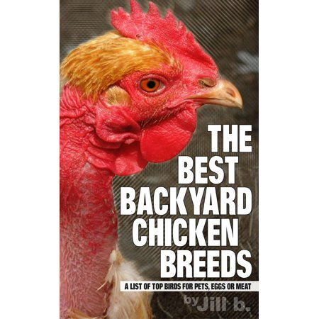 The Best Backyard Chicken Breeds: A List of Top Birds for Pets, Eggs and Meat - (Best Birds To Have As Pets)