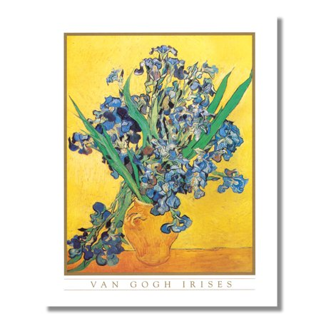 Irises in Flower Vase Vincent Van Gogh Wall Picture 8x10 Art -