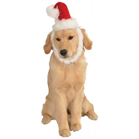 Santa Hat with Beard Pet Costume Accessory - Medium/Large