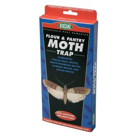 Springstar S203 2 Count BioCare Flour & Pantry Moth Traps