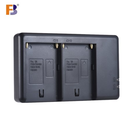 FB NP-F550 Camera Battery Charger 2-Channel Micro-USB Input for Sony F750/F770/F960/F970/F550/F530/F330/F570/FM50/FM70/FM90/FM500H](Halloween Pics For Fb)