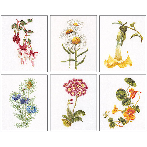 Thea Gouverneur Linen Counted Cross-Stitch Kits, Floral Studies 4, Set of 6