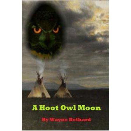A Hoot Owl Moon - eBook