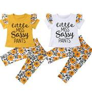 2PCS Toddler Baby Girls Outfits Pants+Tops T-shirt Set Summer Clothes set